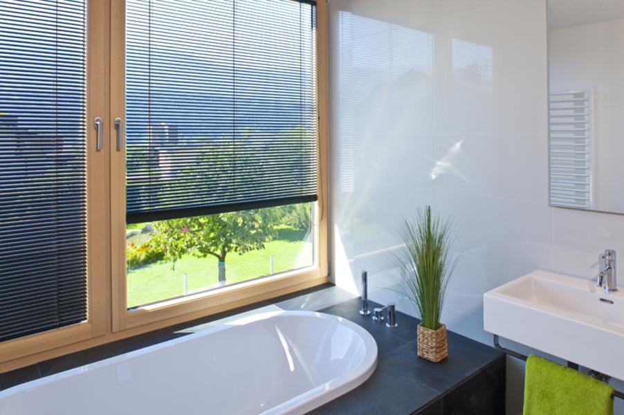 innenjalousien optimaler sicht und sonnenschutz dolenz gollner. Black Bedroom Furniture Sets. Home Design Ideas