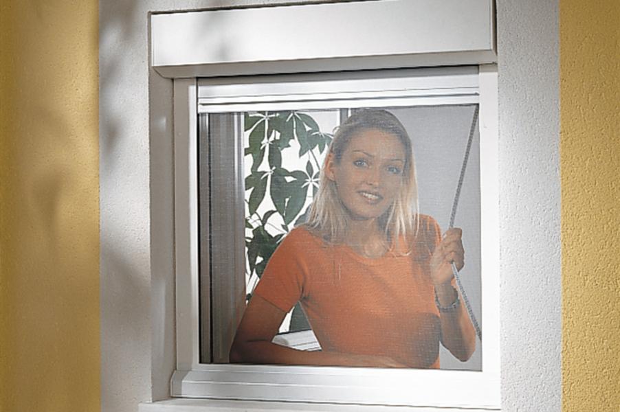 Fenster Mit Rolladen Und Insektenschutz ~ Insektenschutz und Sonnenschutz? Kombiniert oder solo – bei [R