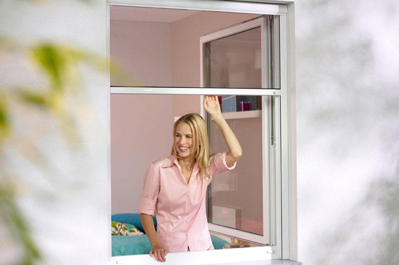 Fenster Mit Rolladen Und Insektenschutz ~ Insektenschutzrollo – Insektenschutz, wenn Sie ihn brauchen